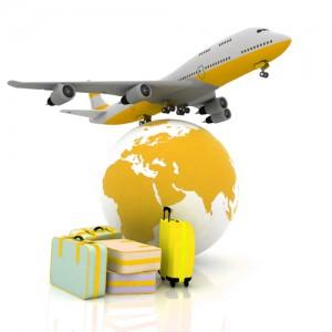 flight_and_luggage