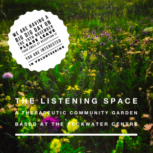 The listening Space